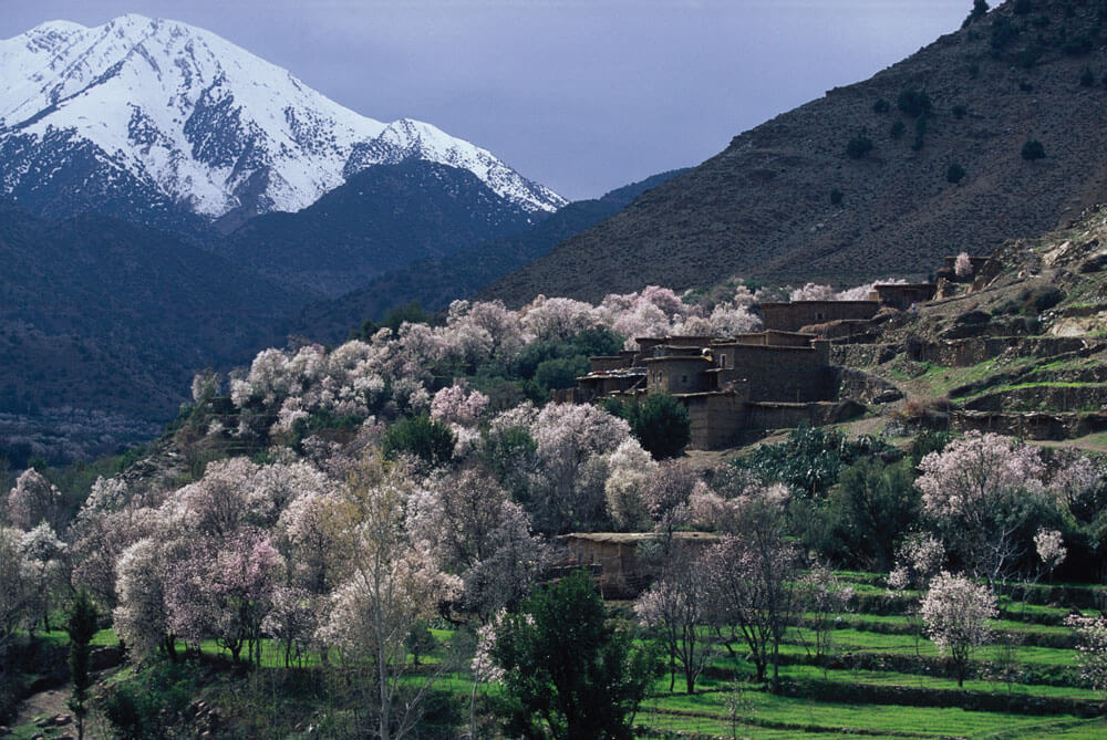 Day trip ourika from marrakech